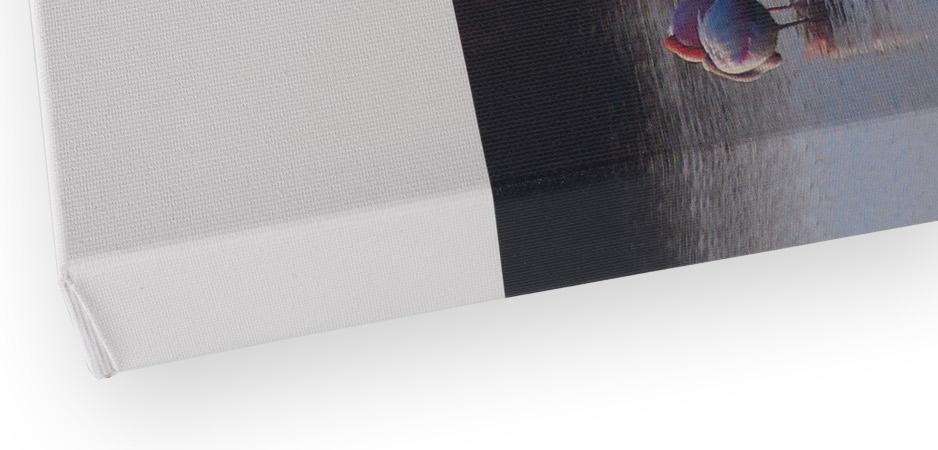 Canvas Detail - Dettaglio Canvas